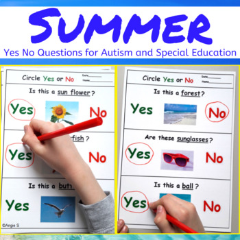 Summer Activity - Yes No Questions