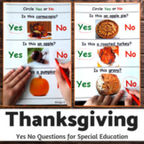 Thanksgiving Activity - Yes No Questions