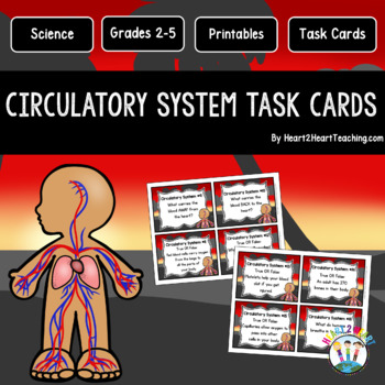 Our Circulatory System Task Cards {Set of 16 Cards}