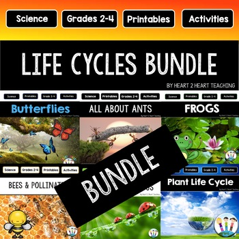 Life Cycles Bundle: Ants, Bees, Butterflies, Frogs, Ladybugs, and Plants