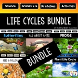 Life Cycles Bundle: Ants Bees Butterflies Frogs Ladybugs Plants