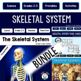 Skeletal System Activities Bundle: Articles, PowerPoint, Task Cards & More!