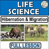 Hibernation and Migration. Year 6 Science lesson with activities