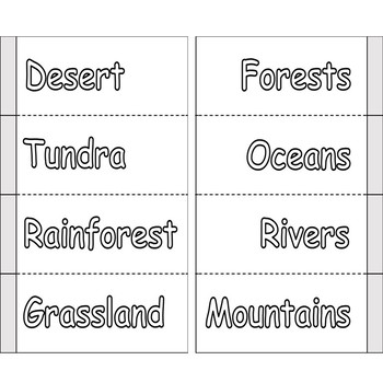 Environments and Habitats - Full Lesson with Activities