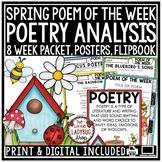 Spring Poem of the Week: Poetry Unit Reading Comprehension