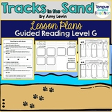 Tracks in the Sand by Amy Levin Guided Reading Lesson Plan