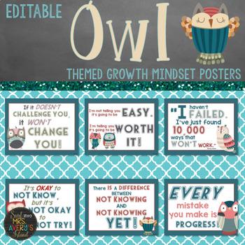 Owl Themed Growth Mindset (Editable)