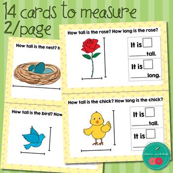 Spring Math Center Measurement