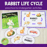 Rabbit Life Cycle Activity Set
