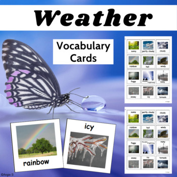 Autism Communication Cards- Weather