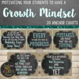 Growth Mindset Posters Farmhouse Editable