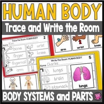 Human Body Write the Room Kindergarten Science Activities