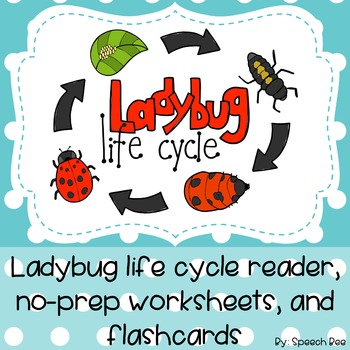 Ladybug Life Cycle: Reader, Worksheets, and Flash Cards