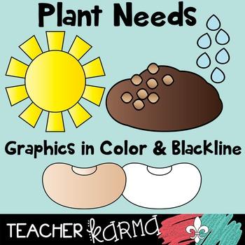 Plant Life Cycle & Needs BUNDLE - Seed Plant