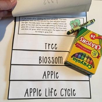 Apples Unit~Primarily Science