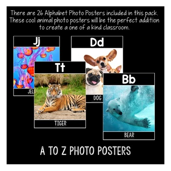 Alphabet Posters: Animals with Real-Life Photos (A to Z)