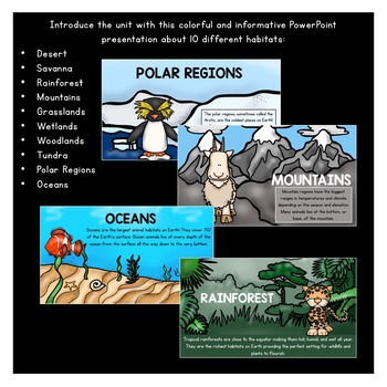 Animal Habitats PowerPoint: Woodlands, Wetlands, Tundra, Grasslands, Desert