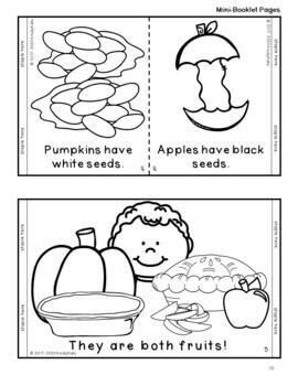 Apples & Pumpkins   Life Cycle  Johnny Appleseed  Jack O'Lantern   Songs, Rhymes
