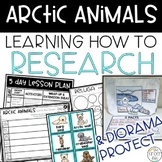 Arctic Animals Research Diorama Project