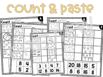Counting Items to 20 Worksheets and Assessment