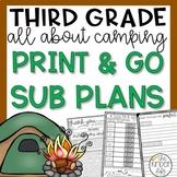 Third Grade Camping June Sub Plans