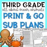 Third Grade Sub Plans June Ocean Animals