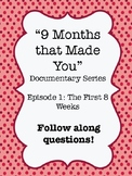"""""""9 Months that Made You"""" Documentary Video Guide Worksheet"""