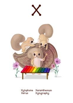 ♥ ABC  letter X. Classroom Poster Alphabet - Animals. English animals alphabet.
