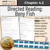 [AICE Marine] Directed Reading 4.2: Bony Fish, w/Digital h