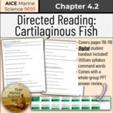[AICE Marine] Directed Reading 4.2: Cartilaginous Fish, w/