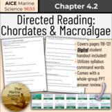 [AICE Marine] Directed Reading 4.2: Chordates & Macroalgae