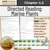 [AICE Marine] Directed Reading 4.2: Marine Plants w/Digita