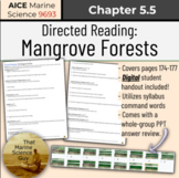 [AICE Marine] Directed Reading 5.5: The Mangrove Forest w/
