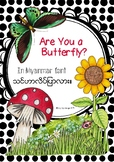 'ARE YOU A BUTTERFLY?'- IN MYANMAR (BURMESE)
