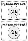 'AY' PHONIC SOUND MINI-BOOK