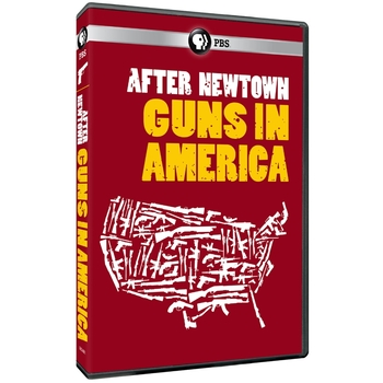 """""""After Newtown: Guns in America"""" Video Questions"""