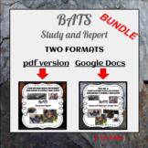 Bats for Google Docs & PDF  BUNDLE - Ideal for distance le