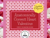 """""""Anatomically Correct"""" Heart Valentine- Perfect for Valent"""
