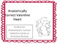 """""""Anatomically Correct"""" Valentine Heart Activity With Teacher's Guide"""