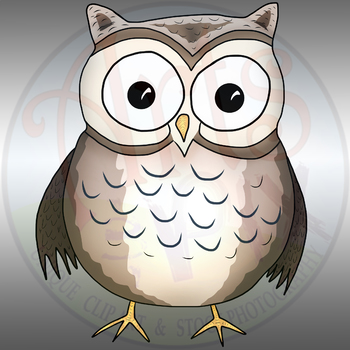 """""""Animals"""" Clipart - OWL - png"""