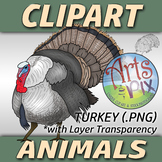 """Animals"" Clipart - TURKEY - png"