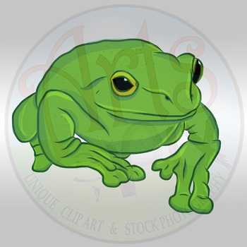 "CLIPART - ""Animals: Tree Frog"" - PNG Clipart - Arts & Pix"
