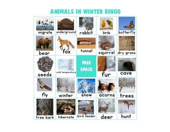 """Animals in Winter"" Bingo Game"