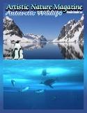 """""""Antarctic Wildlife"""" Art & Nature-Science Unit"""