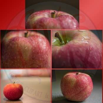 """Apple"" Stock Photo Mini-Pack - Styled Apple Photographs"