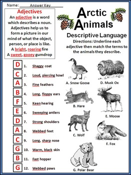 Arctic Animals Activities: Arctic Animals Winter Activity Packet