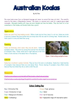 'Australian Koalas' Colour-Coded Information Report for Modelled Writing