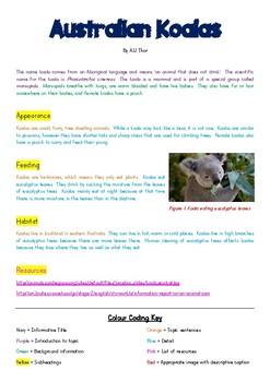 'Australian Koalas' Colour-Coded Information Report for Modelled Writing