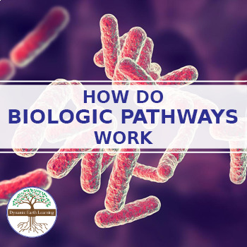 (Biology and Genetics) Biologic Pathways - Reading Guide