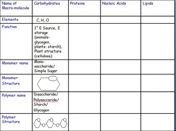 """Biomolecule"" Organic Chem Modeling/Identification Activities- Common Core NGSS"